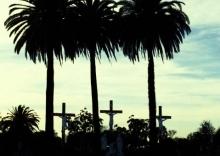 LA 3 crosses