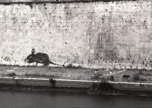 Rome 1985